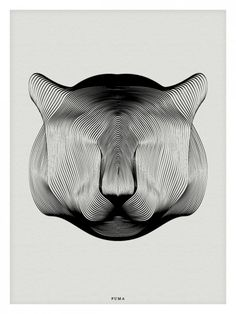 Animals in Moiré / Andrea Minini | AA13 – blog – Inspiration – Design – Architecture – Photographie – Art