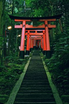 ✧ Mesmerizing Nature ✧ - ourbedtimedreams: Fushimi Inari-taisha by. Aesthetic Japan, Japanese Aesthetic, Travel Aesthetic, Beautiful Places To Travel, Beautiful World, Fushimi Inari Taisha, Japon Tokyo, Japan Architecture, Vintage Architecture