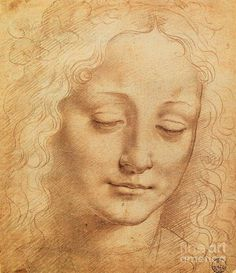 andrea del sarto drawings - Google Search