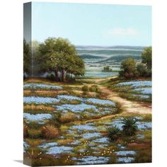 Global Gallery 'Valley of the Bluebells I' by Arcobaleno Painting Print on Wrapped Canvas Size:
