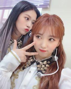Yuri, Japanese Girl Group, The Wiz, Pop Group, Kpop Girls, Hair Beauty, Instagram, Beautiful, Random