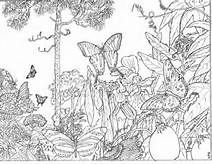 Beautiful Coloring Pages for Adults - Bing Images
