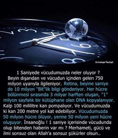 """"""" MuRaT """" The More You Know, Did You Know, Olay, Biology, Cool Words, Personal Development, Karma, Einstein, Quotations"""