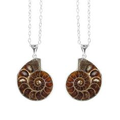 unique sea fossil necklaces