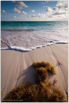 Planning a trip to Eleuthera? Eleuthera-Map offers the information and resources you need to experience the best of what the Island has to offer. Destin Beach, Beach Trip, Eleuthera Bahamas, Nassau, Beautiful Places In The World, Amazing Places, Pink Sand Beach, Hidden Beach, Beach Rocks