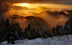 Schliffkopf in 1000m Höhe im Nordschwarzwald