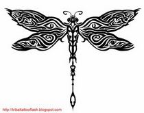 The ability of the dragonfly to transform from water into air, defines the metaphysical symbolism or spiritual meaning of a dragonfly. These two qualities make a dragonfly a sign of change. The dragonfly represents going past our self-imposed limits and achieve set goals in life. Dragonflies are symbols of growing up and maturity.