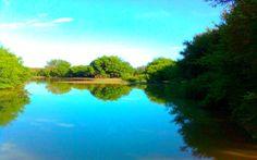 Estanque La Rosita. River, Outdoor, Ponds, Outdoors, Outdoor Games, The Great Outdoors, Rivers