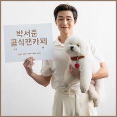 Joon Park, Park Seo Jun, Seo Joon, Kdrama Actors, Perfect Man, Korean Actors, Fangirl, Teddy Bear, Secretary