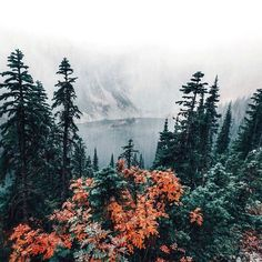 misty mountain lake view