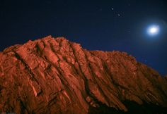 Apparently, We Are All Aliens - News - Bubblews