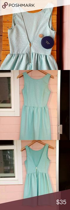 S TEAL LOVE...ADY FIT & FLARE DRESS *teal dress with v-cut back *size small *adorable rose detail throughout dress *euc - has plenty of life left *perfect for work or a night out with the girls *comes from a smoke-FREE & pet-FREE home Love...Ady Dresses Mini