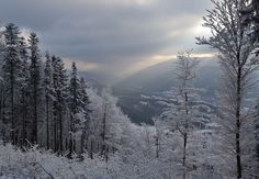 Beskydy letos v zimě nabídnou zrekonstruované lyžařské svahy s posíleným zasněžováním, upravené běžkařské trasy a turistické soutěže i tradiční výstavy
