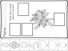All About Plants {Informational} White Desk Design, All About Plants, Parts Of A Plant, Vocabulary Cards, Plant Needs, Spring Is Here, Life Cycles, Garden Tools, Worksheets