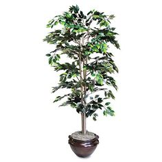 Nu-Dell - Artificial Ficus Tree, 6-ft. Overall Height - Sold As 1 Each - Soft, flowing leaves add a touch of color to any space. * Check out this great product.