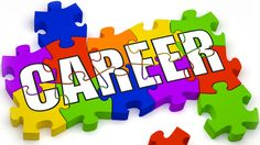 Career advice for business manager