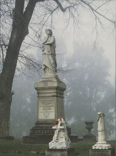 Sacramento City Cemetery - dates back to the California Gold Rush. It's a beautiful garden setting among old tombstones.