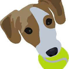 Playful Jack Russell with a tennis ball