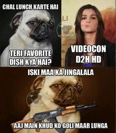BC kutta and alia bhatt jokes . Aj me khud ko goli mar lunga Latest Funny Jokes, Funny School Jokes, Stupid Funny Memes, Sms Jokes, Text Jokes, Funny Images, Funny Pictures, Bollywood Funny, Sweet Memes