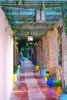 Le Jardin Majorelle, Marrakech, Morocco. www.facebook.com/Welcome.Morocco - love the colorful pots