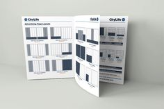 CITYLIFE - Advertising Rate Card Display showing Advertising Page Layouts and prices.