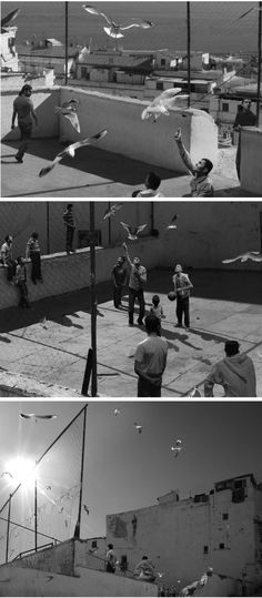 David Claerbout: The Algiers Sections of a Happy Moment (video stills, 2008)