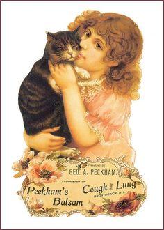 Soloillustratori: Victorian Cats n. 2