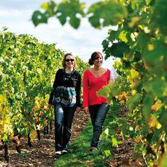 Week-end dans le vignoble du Val de Loire / Weekend in the vineyards of the Loire Valley