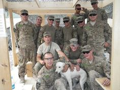 This dog saved 31 lives during a morning attack on our COB June 19th. Please help raise funds to get this great dog home. This is a pic of Kiowa with the Platoon (9 of us got sent home) on the memorial we built for TOM BOYLE, who died during the attack. He was a civilian contractor, who was on the Chicago PD for 30 years. Please help me get Kiowa home.  Donate here to help this amazing war hero come home with his soldiers:  http://thepuppyrescuemission.chipin.com/kiowa-afghan-dog