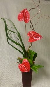 Delightful Hawiian Special If you can't make it to Hawii send this tropical bouquet of long lasting antherium in a red glass vase. http://www.pjsflowers.com/delightful-hawiian-special/
