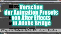After Effects Presets Vorschau in Adobe Bridge
