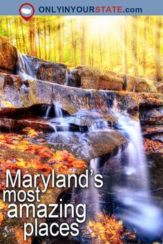 Travel | Maryland | Attractions | USA | East Coast | Beautiful Places | Natural Wonders | Bucket List | Places To Visit | Day Trips | Things To Do | Outdoor | Adventure | Hidden Gems | Weekend Getaway | Scenic Drive | Mountains | Scenic Hikes | Trails | Hiking | Easy Hikes | Assateague Island | Islands | Beaches | Calvert Cliffs | National Harbor | State Parks | Canal | Ellicott City | Baltimore | Harbor | Lakes | Annapolis | Waterfalls | Wildlife | Scenic Railroad | Chesapeake Bay Bridge