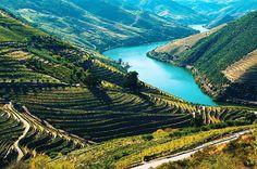 Região Vinícola do Alto Douro As encostas do rio mais famoso de Portugal são cobertas por vinhedos. As aldeias pequeninas não intimidam o tamanho das vinícolas nem os seus mais de dois mil anos de história. O ilustríssimo vinho do Porto é filho da região do Alto douro. #viajandocomsovania #sovaniapelomundo #douro #altodourovinhateiro #viniculasdoporto #porto #portugal #vinhodoporto #riodouro #travel #trip by viajandocomsovania