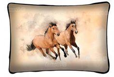 Vankúš : Kone