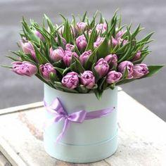 François J. Interiors  www.interiordesignbyfrancois.com Flower Bouquet Boxes, Beautiful Romantic Pictures, Purple Tulips, Amazing Flowers, Plant Hanger, Paper Flowers, Floral Arrangements, Bloom, Interiors