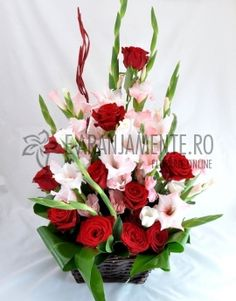 Trandafiri si Gladiole | e-Aranjamente