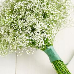 Maybe brides maids bouquet, simply baby's breath