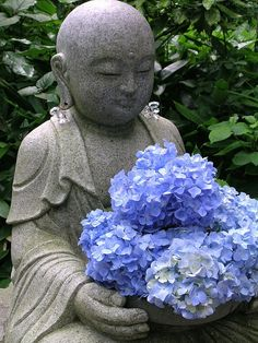 unity and harmony budha Baby Buddha, Buddha Zen, Buddha Buddhism, Buddhist Art, Ikebana, Blue Hydrangea, Hydrangeas, Japanese Flowers, Dalai Lama