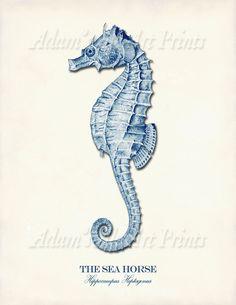 4 Navy Blue Sea Art Prints Starfish Print by AdamsAleArtPrints