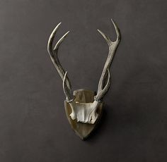 for antler wall collage