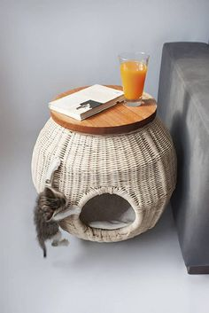 Modern wicker side table that serves as your cat condo house and to hide the litter box