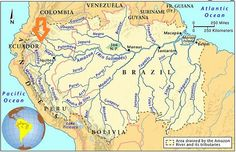 amazzonia cartina -L'Amazzonia, nota anche come Foresta Amazzonica, è una foresta pluviale tropicale nel Bacino dell'Amazzonia in Sud America.  Cerca con Google