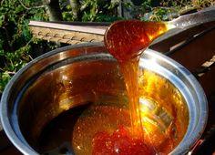 .....profumi e colori .....: Caramello facile, veloce e delizioso