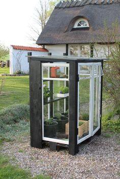 Her er et ægte gør-det-selv drivhus. Min mors kæreste Michael skulle en tur på genbrugsstationen og der lå 6 flotte gamle vinduer...
