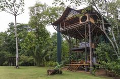 this couple built their dream home in the costa rican jungle on domino.com
