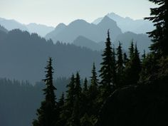 Olympic Mountains are a mountain range on the Olympic Peninsula of western Washington in the United States. Mountain Paintings, Nature Paintings, Paintings Of Mountains, Perspective Atmosphérique, Image Deco, Olympic Mountains, Inspiration Art, Mountain Tattoo, Mountain Range