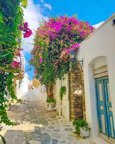 Walking through a traditional alley in 📍Tinos island (Τήνος) Cyclades Greece, Out Of This World, Greece Travel, Shade Garden, Countryside, Traveling By Yourself, Scenery, Places To Visit, Island