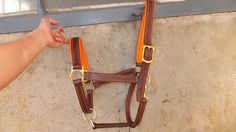 Halter horse brown leather size . Noseband and headpiece lined and padded with an orange skin dressing for comfort . Orange seams are entirely handmade .  As usual, the buckles is yellow brass.