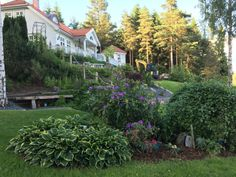 hage - hosta og rododendron Mansions, House Styles, Plants, Home Decor, Pictures, Decoration Home, Manor Houses, Room Decor, Villas