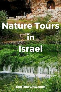 Israel is a very popular travel destination. Visitors enjoy the ancient history, Israeli food, wines, visiting the Galilee, Jerusalem, Negev Desert, the Dead Sea, and the Red Sea by Eilat. Discover the diverse culture and landscape of Israel with the best tours that include workshops, cultural explorations, recreational sports, and more! Click to read! #EcoTourLinQ #Israel #TravelTips #MiddleEast #WalkingTours #Hiking #CulturalTours #NaturePhotography #LandscapePhotography #Jerusalem